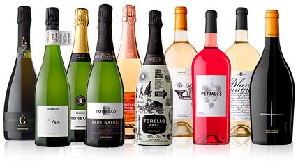 Conjunt de 10 ampolles dels vins i escumosos de Torelló
